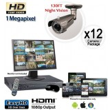 Megapixel Outdoor Camera System, 12 Bullet Cameras 130ft Night Vision