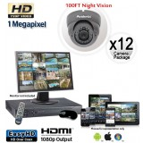 HD 12 Vandal Proof Dome Camera System